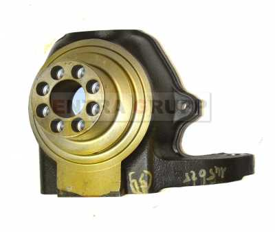 Поворотный кулак 466009 (Ex 145025)
